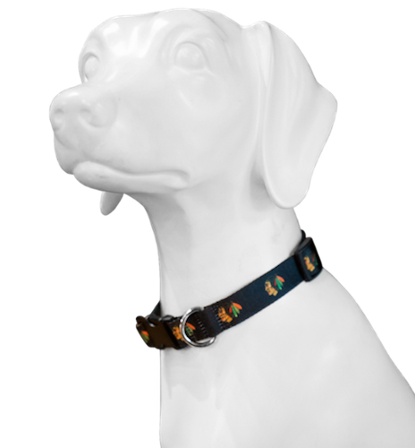 19-20 Chicago Blackhawks dog collar giveaway for pet lovers night